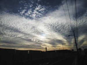 201511_urokogumo